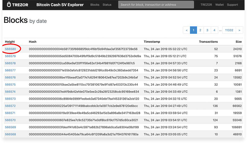 Обозреватель блокчейна BitcoinCashSV