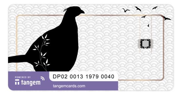 tangem-pheasant-xlm02